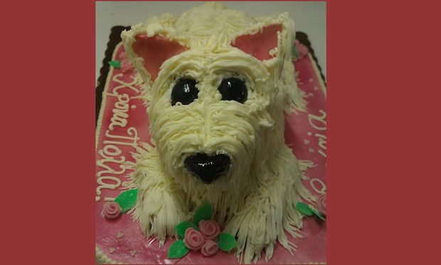 My cakes - My hobby! Φτιάχνουμε υπέροχη τούρτα σκυλάκι!