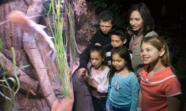 Oι προτάσεις της εβδομάδας από το mothersblog.gr και τη Φοίβη Λέκκα για υπέροχες στιγμές με τα παιδιά σας