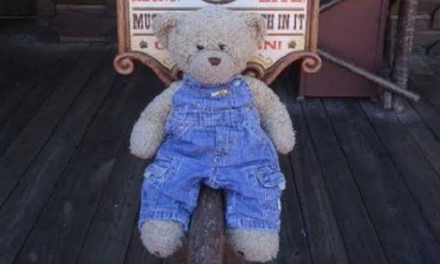 Η 3χρονη και το ξεχωριστό αρκουδάκι. Μία συγκινητική ιστορία (εικόνες)