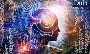Η «αποσύνδεση» του εφηβικού εγκεφάλου πυροδοτεί την κακή συμπεριφορά