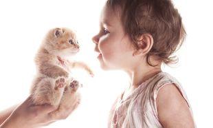 Γάτες και... ζωύφια ωφελούν την υγεία των παιδιών!