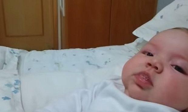 Σκυλάκι προσπαθεί να δει για πρώτη φορά το νεογέννητο. Θα τα καταφέρει; (βίντεο)