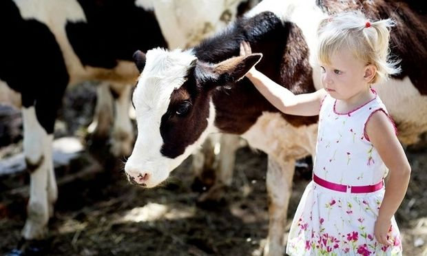 Πίσω στο χωριό! Τα παιδιά που ζουν σε αγροκτήματα με ζώα παθαίνουν πολύ λιγότερες αλλεργίες!