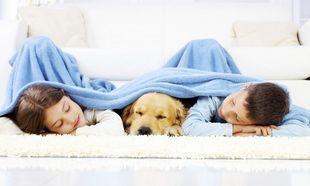 «Ο γιος μου και η κόρη μου κοιμούνται στο ίδιο δωμάτιο. Πειράζει;» Από τον Θάνο Ασκητή