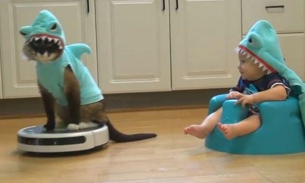 Γάτος και μπέμπης ντυμένοι καρχαρίες, διασκεδάζουν με έναν διαφορετικό τρόπο!