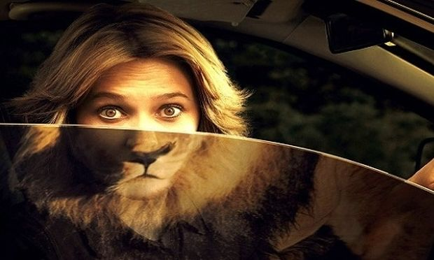 Τεστ: Μάθε ποιο ζώο ανάλογα με το χαρακτήρα σου σε αντιπροσωπεύει!