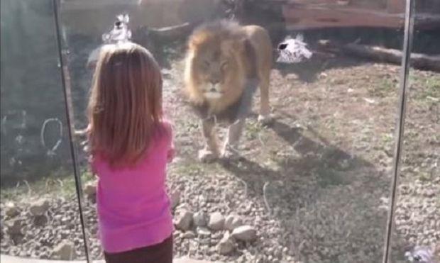 Παιδιά επισκέπτονται ζωολογικό κήπο: Οι αντιδράσεις τους είναι απλά απολαυστικές (βίντεο)