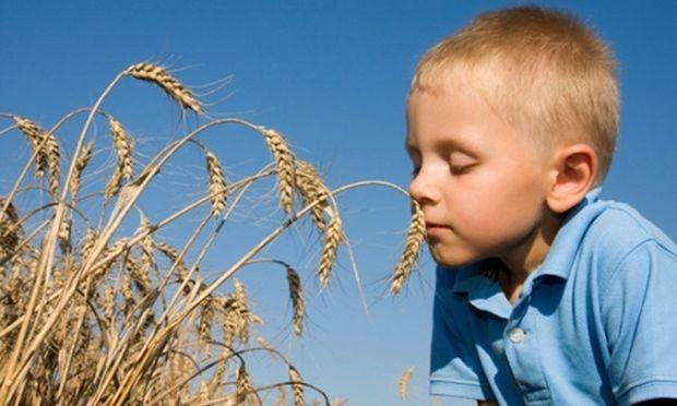 «Έχω δυσανεξία στη γλουτένη, τι πρέπει να τρώω;» Από τη διατροφολόγο Ευσταθία Παπαδά