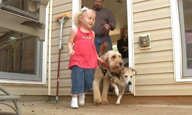 Ο σκύλος την ακολουθεί παντού. Μόλις μάθετε το λόγο θα δακρύσετε! (βίντεο)