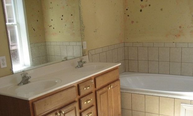 Αυτοί είναι οι τρόποι για να μην έχετε μούχλα και υγρασία στο μπάνιο!