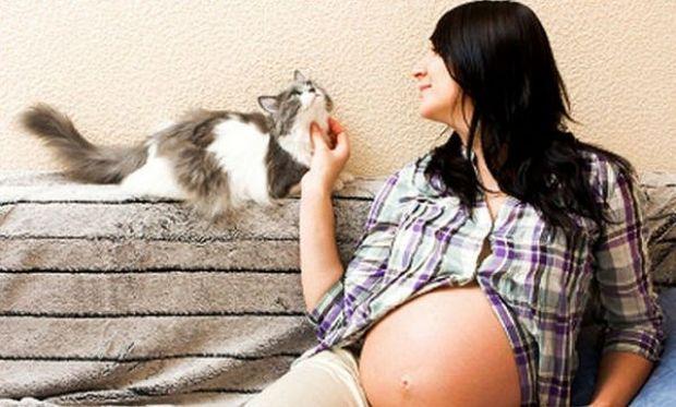 Τοξοπλάσμωση κι εγκυμοσύνη: Τι πρέπει να προσέξετε