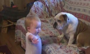 Δείτε πώς διαφωνεί αυτό το μωρό με τον σκύλο της οικογένειας! (βίντεο)