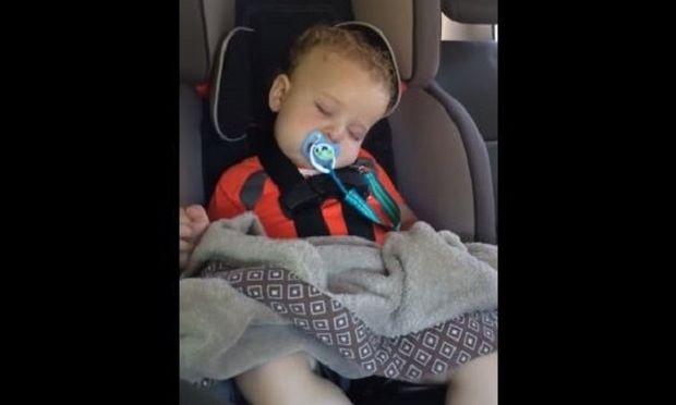 Αυτό το μωράκι κοιμάται του καλού καιρού μέχρι που... (βίντεο)