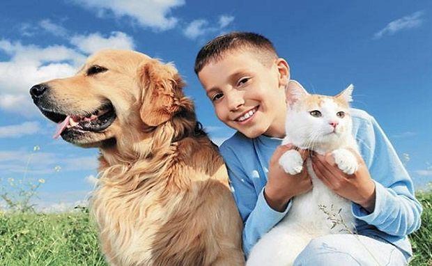 Κατοικίδια μέσα σε οικογένεια: Όλα όσα πρέπει να γνωρίζουμε-Από τον κτηνίατρο του Mothersblog