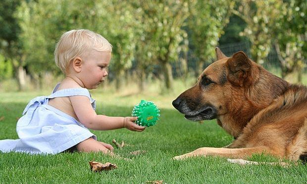 Πρώτη φορά σκυλάκι στο σπίτι, πριν ή μετά το παιδί;