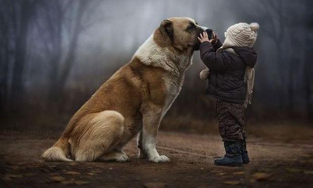 Παγκόσμια Ημέρα των Ζώων σήμερα-Σε όλα τα ζώα αξίζει μια καλύτερη ζωή