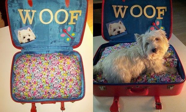0d6990fc9efc Μετατρέψτε την παλιά σας βαλίτσα σε κρεβάτι για το σκύλο ή τη γάτα σας!