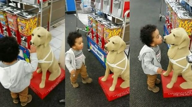 Νήπιο μπερδεύει το άγαλμα με πραγματικό σκύλο. Δείτε το ξεκαρδιστικό βίντεο
