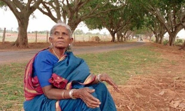Μια άτεκνη γυναίκα φύτεψε και μεγάλωσε για παιδιά της 384 δέντρα!Μία συγκινητική ιστορία