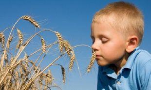 Τι είναι η κοιλιοκάκη και πώς επηρεάζει τα παιδιά