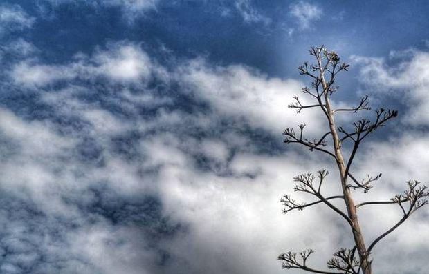Ο καιρός «αναβάλλει» τα Χριστούγεννα! Έρχεται άνοδος της θερμοκρασίας
