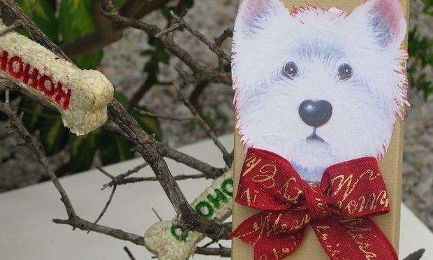 Φτιάξτε ένα χριστουγεννιάτικο δώρο για το κατοικίδιό σας!