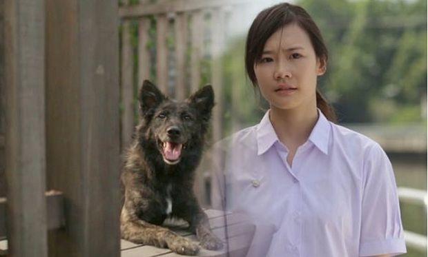 Από τα πιο συγκινητικά βίντεο που έχουμε δει στο youtube: Πώς μία κοπέλα αποφάσισε να γίνει κτηνίατρος
