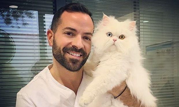 Μάθετε τα πάντα για τα λοιμώδη νοσήματα που μπορεί να παρουσιάσουν οι γατούλες σας!