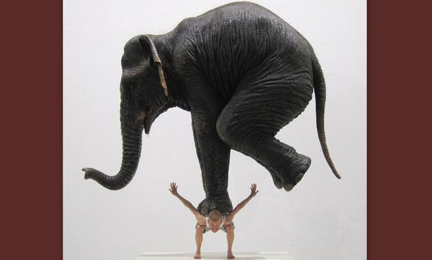 Τον αποκάλεσε «χοντρό ελέφαντα» και ο σύζυγός της την πήγε στο δικαστήριο!