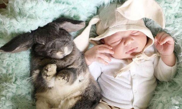 Ό,τι πιο γλυκό έχετε δει. Νεογέννητο μωράκι παρέα με το κουνελάκι του! (εικόνες)