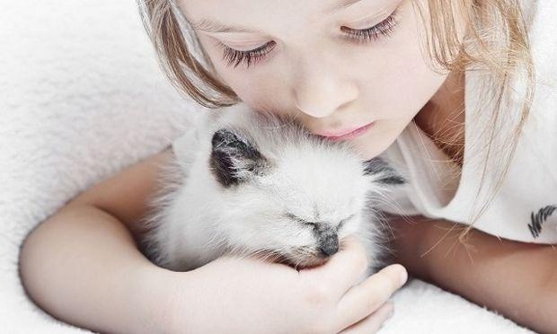 Πώς θα απασχολήσει το παιδί σας τη γάτα του δημιουργικά!
