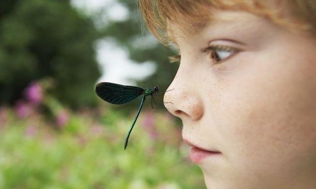 Πώς να προστατέψετε τα παιδιά από τα κουνούπια