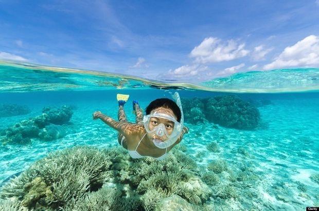 Αναζητάτε καθαρές θάλασσες για µπάνιο; Δείτε τα φύκια!