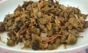 Καπαροσαλάτα Σίφνου: Η σαλάτα που διατηρείται για μήνες στο ψυγείο!