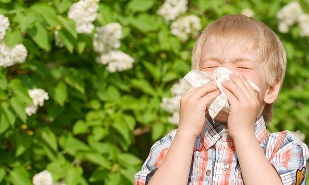 Μύθοι και πραγματικότητες για τις αλλεργίες