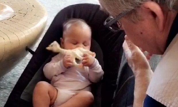 Παιχνίδια με τον παππού της απολαμβάνει η κόρη γνωστού μοντέλου