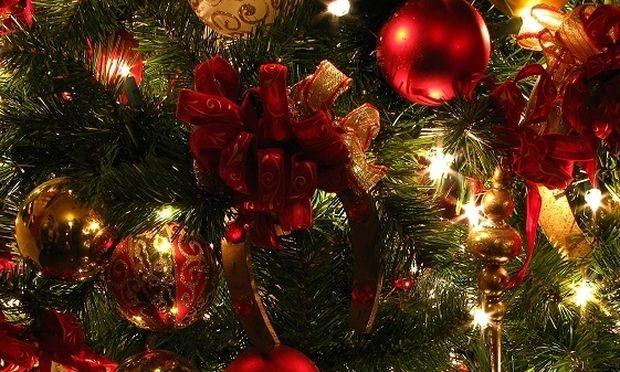 Μήπως είστε αλλεργικοί στο χριστουγεννιάτικο δέντρο και δεν το ξέρετε;