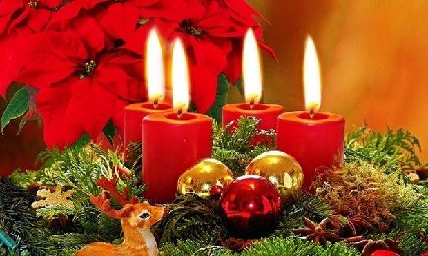 Αλεξανδρινό,το χριστουγεννιάτικο-Είναι ή όχι επικίνδυνο για την υγεία μας;