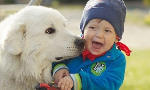 «Το παιδί μου φοβάται τα ζώα! Τι να κάνω»;
