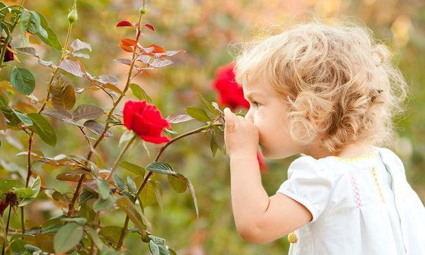5 απίθανες επιδράσεις που εχει η επαφή με τη Φύση στα παιδιά