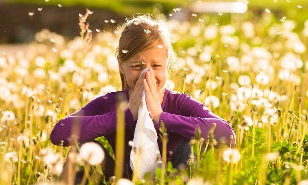Αντιμετωπίστε τις αλλεργίες της Άνοιξης με αυτούς τους 3 τρόπους