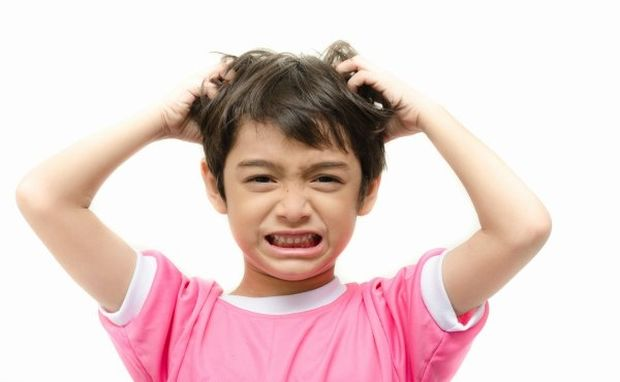 Ψείρες: Σπάστε το ταμπού και απαλλάξτε το παιδί σας με απόλυτα φυσικό τρόπο!
