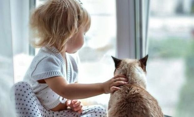 Ερωτηματολόγια ανάπτυξης και συμπεριφοράς για γονείς σε παιδιά 16-20 μηνών