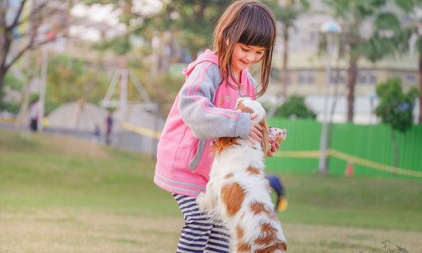 Τα 10 καλύτερα σκυλιά για οικογένεια με παιδιά
