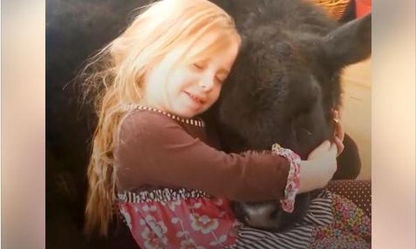 Το αγαπημένο κατοικίδιο αυτού του κοριτσιού είναι μια ...αγελάδα!