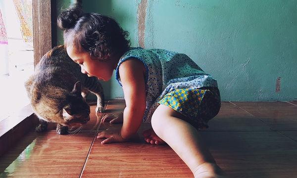 Έξι πράγματα που μπορείτε να διδάξετε στα παιδιά σας για τις γάτες