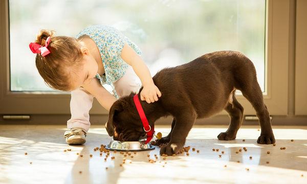 Τι πρέπει να κάνετε αν το παιδί σας φάει σκυλοτροφή!