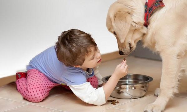 Το παιδί μου έφαγε σκυλοτροφή! Να αγχωθώ;