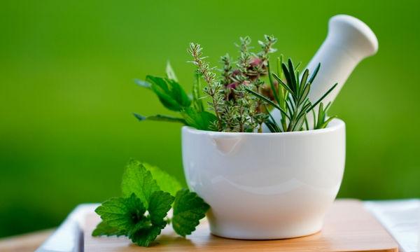 Δέκα βότανα που θα σας βοηθήσουν να αδυνατίσετε