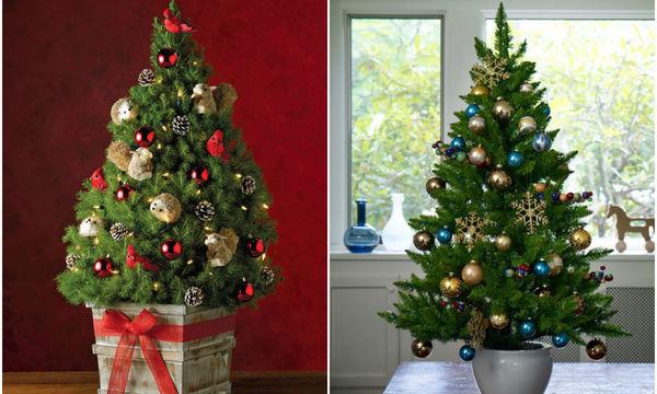 Είκοσι ιδέες για να στολίσετε mini χριστουγεννιάτικα δέντρα